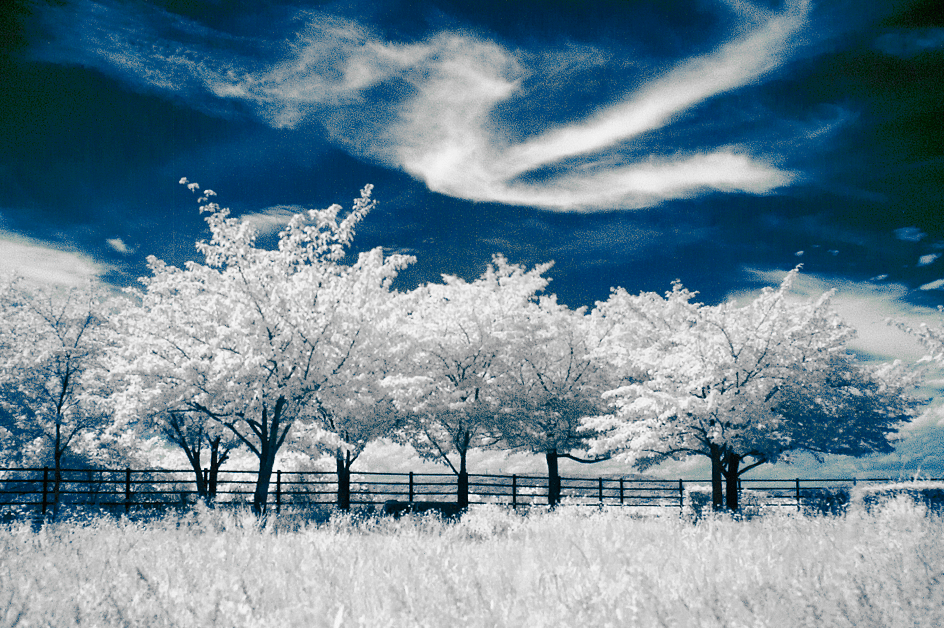 Infrared_first_detail_04