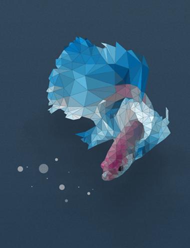 polygon_fish_thum